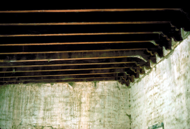 ceiling rafters (click to enlarge)